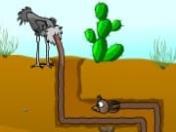 Deve Kuşu Yumurtaları oyunu